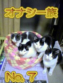 オナシ一族7
