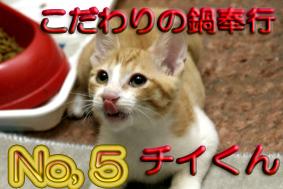 ちぃくん5