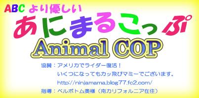 Animal COP