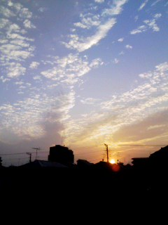 CAFO0D4C sunset