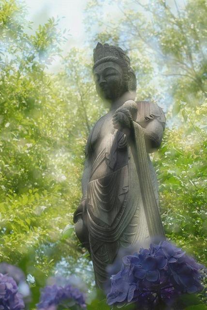 観音像と紫陽花
