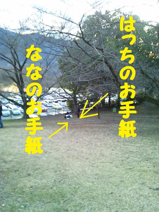 DSC_06832010.jpg