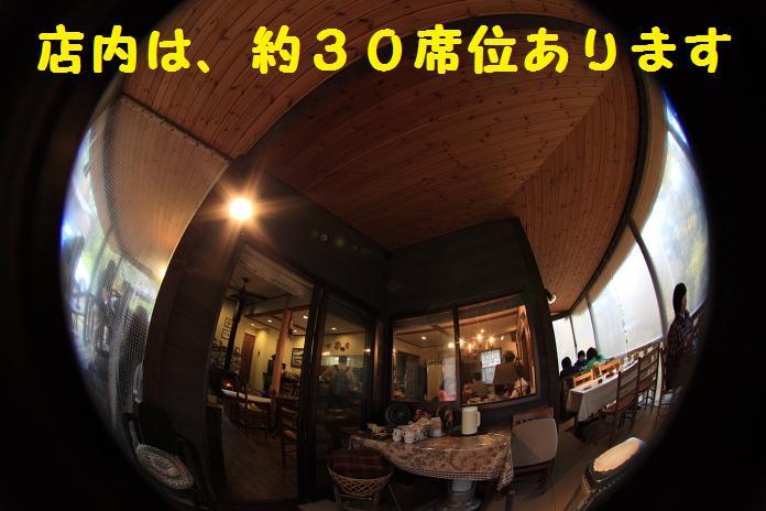 IMG_04432010.jpg