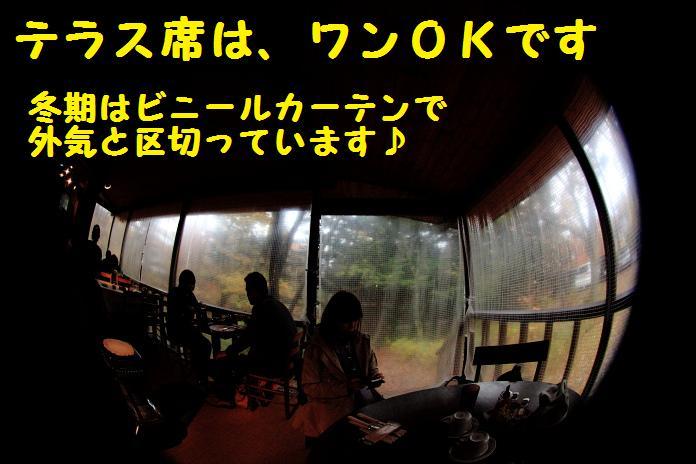 IMG_04452010.jpg