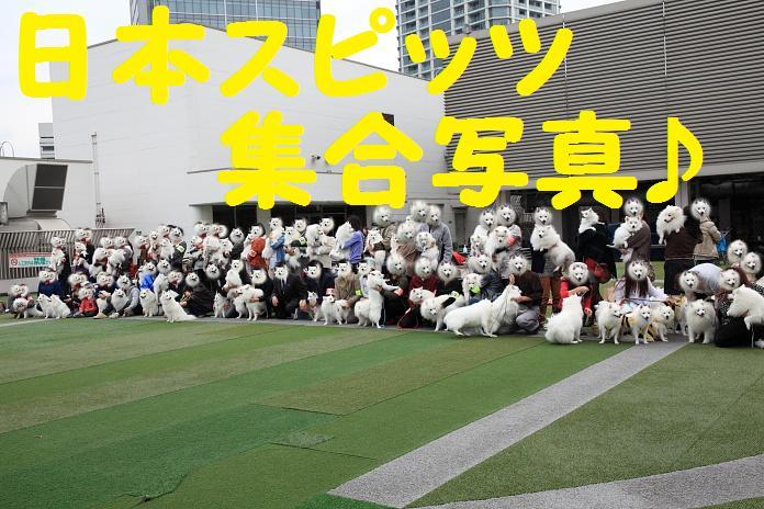 IMG_05232010.jpg