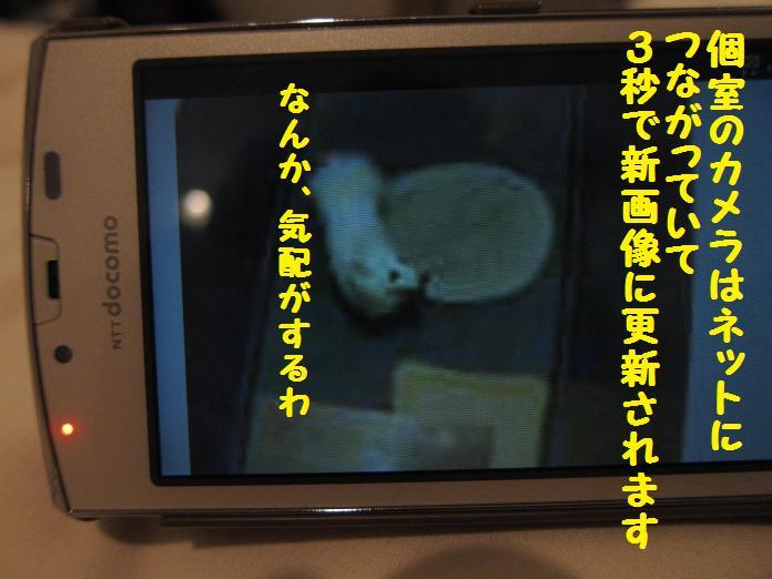 IMG_24282010.jpg