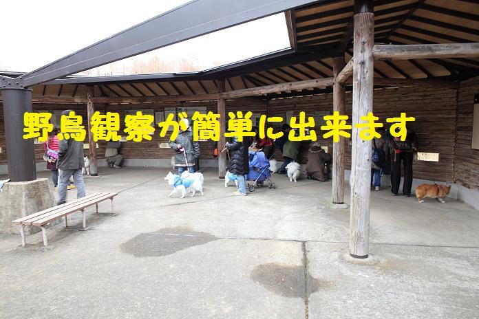 IMG_25142010.jpg