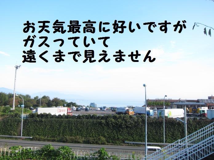 IMG_25492010.jpg
