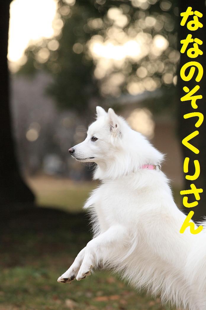 IMG_25782010.jpg
