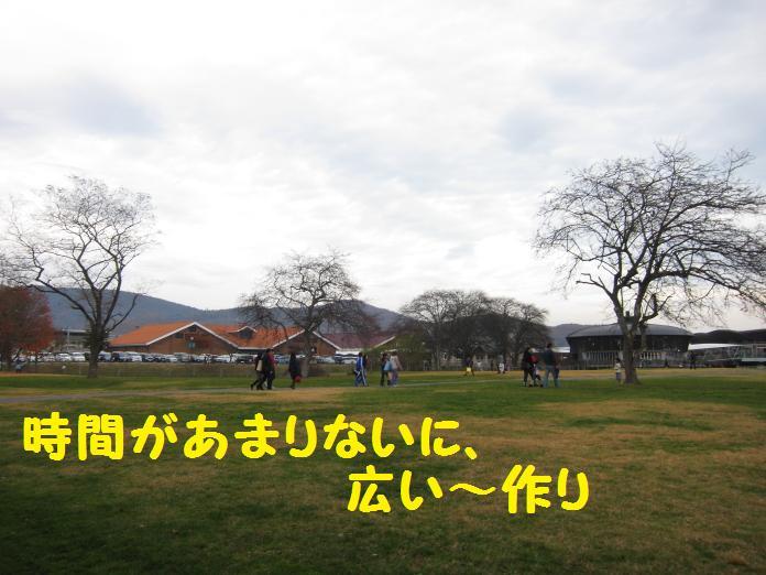 IMG_26812010.jpg