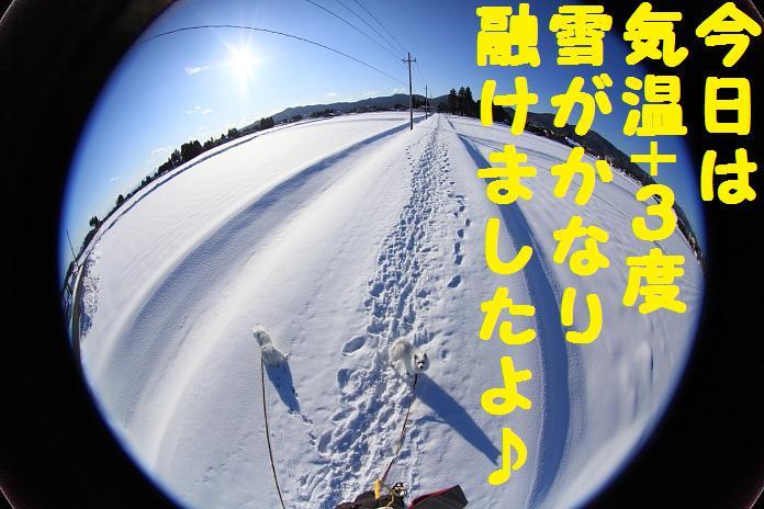 IMG_27162010.jpg