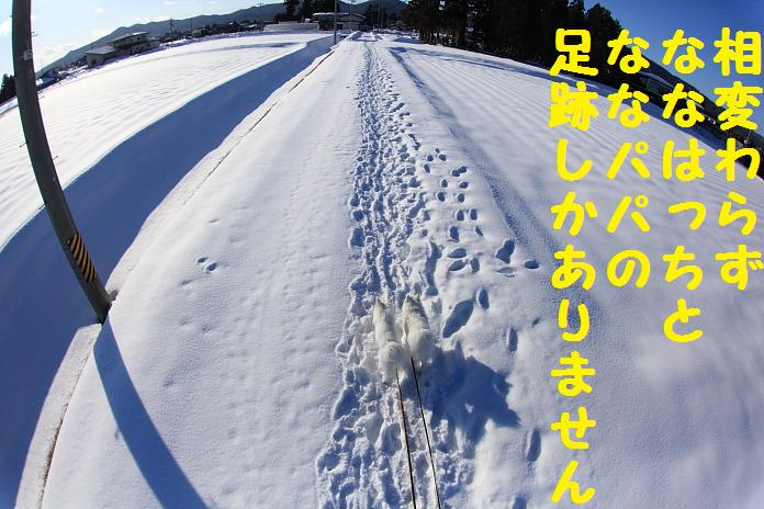 IMG_27672010.jpg