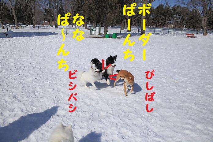 IMG_29842010.jpg