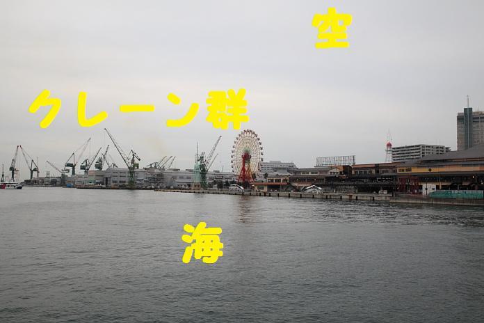 IMG_80352010.jpg