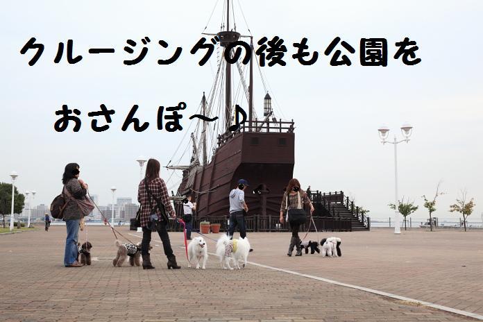 IMG_81852010.jpg