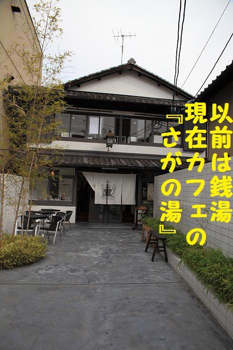 IMG_82542010.jpg
