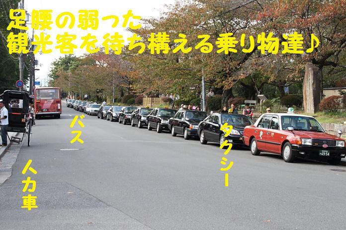 IMG_96192010.jpg