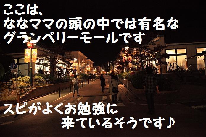 IMG_97732010.jpg
