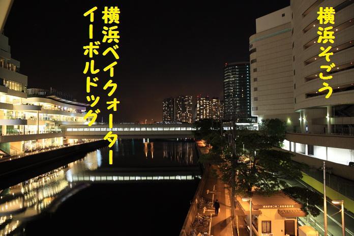 IMG_97852010.jpg