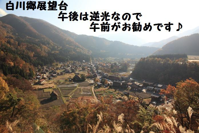IMG_99962010.jpg