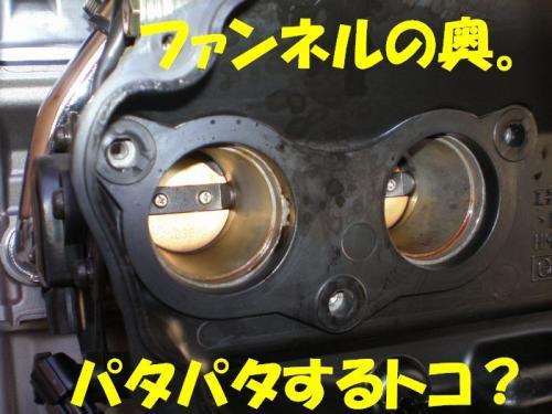 ful8.jpg
