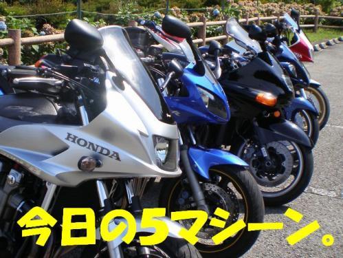 ryu4_20090824215436.jpg
