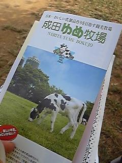 成田ゆめ牧場。
