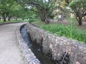 酒津公園47