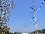 P2650806.jpg