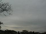 P2680974.jpg
