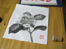 6/28 (紫陽花)