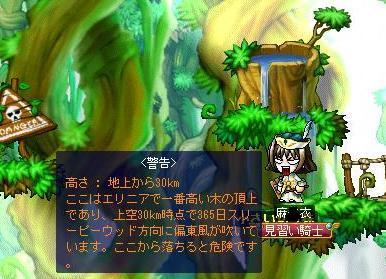 09_08_01_03_1.jpg