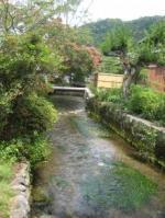 醒ヶ井の川-2
