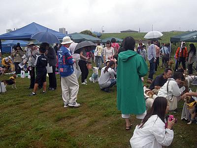 sinozaki32.jpg
