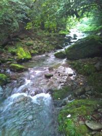 檜原の河原