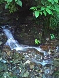 龍神の滝2