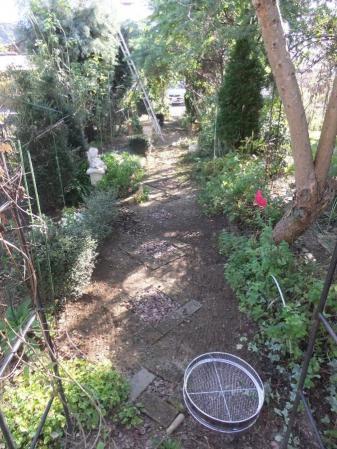 2011-11-26_06.jpg