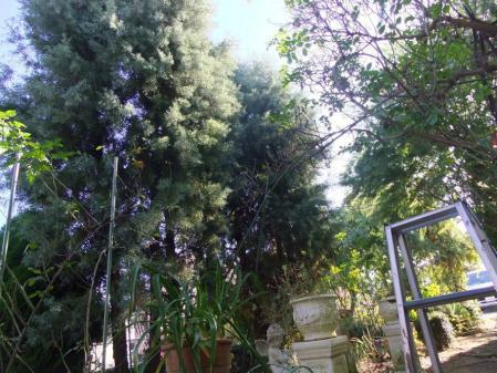 2011-11-26_25.jpg