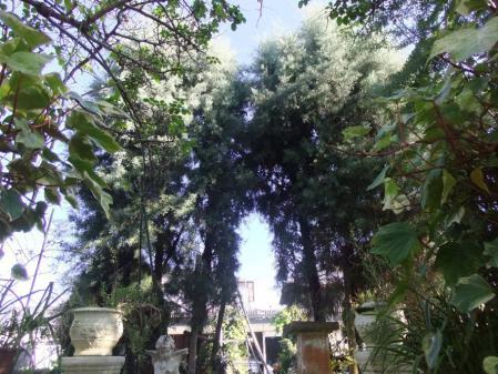 2011-11-26_27.jpg