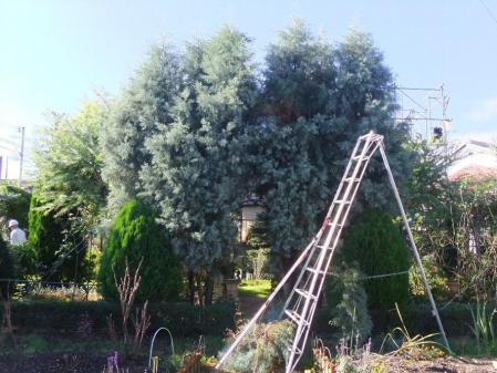 2011-11-26_30.jpg