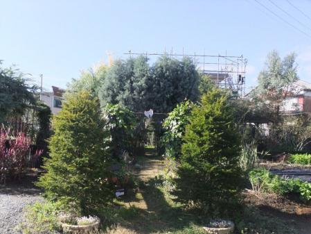 2011-11-26_37.jpg