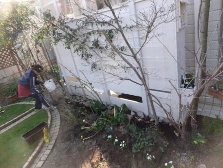 2012-03-25_41.jpg