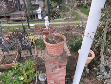 2012-03-25_52.jpg