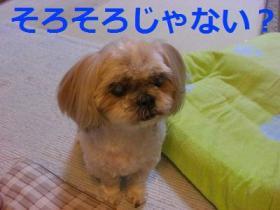 001_20090930211238.jpg