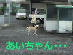014_20090831201034.jpg