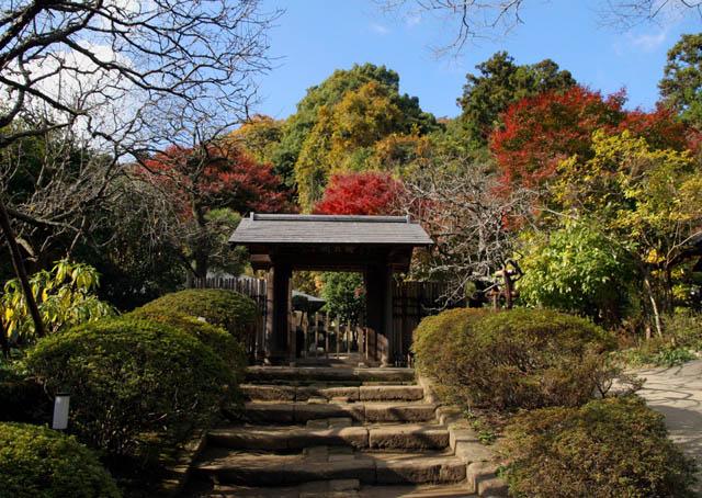 北鎌倉13