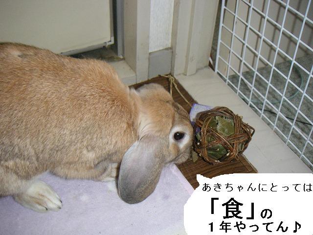 あきちゃんにとっては「食」の1年。
