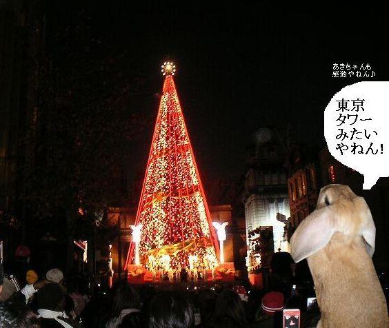 赤いツリーは東京タワーみたい?