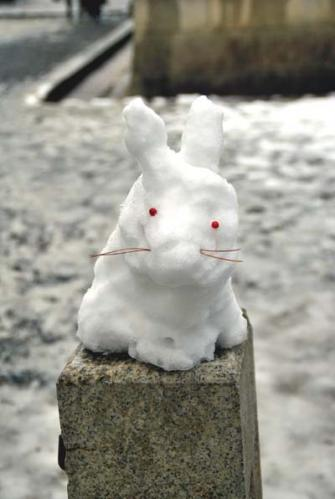 南禅寺の雪うさぎ
