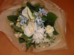 PA170002お花